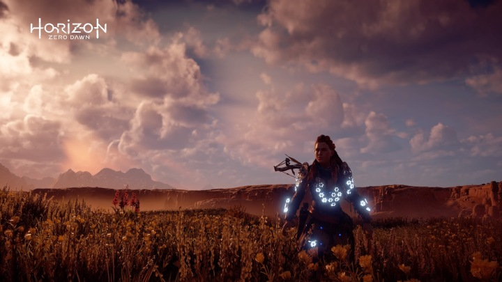 Horizon Zero Dawn™_20180225164253